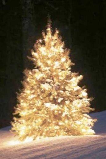 Albero Di Natale 2 Grande
