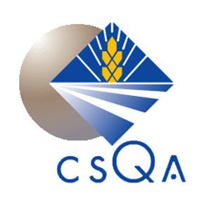 about-csqa
